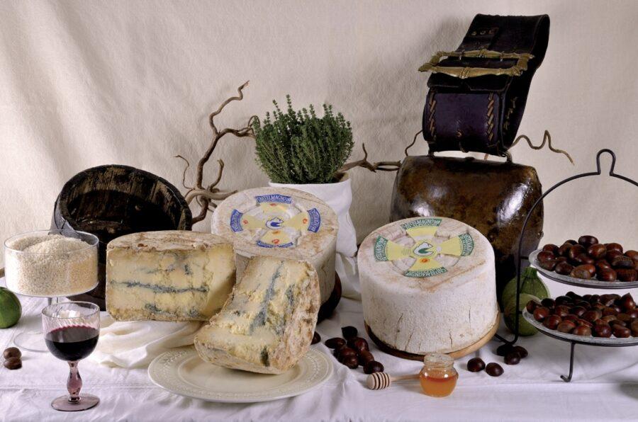 """Sulla tavola delle feste arriva il Castelmagno, il """"re dei formaggi""""!"""