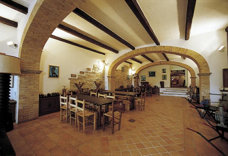 Le diverse anime delle cantine d'Abruzzo
