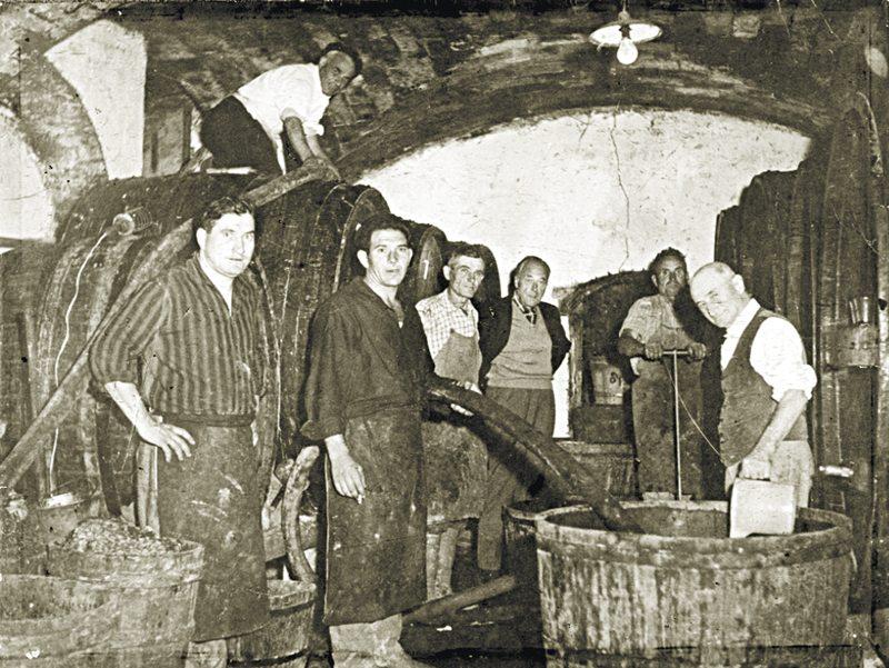 Nuove etichette e costante qualità dei vini della Fattoria Mantelassi