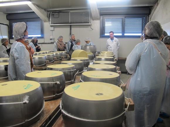 Il Consorzio Parmigiano Reggiano ripropone l'iniziativa Caseifici Aperti