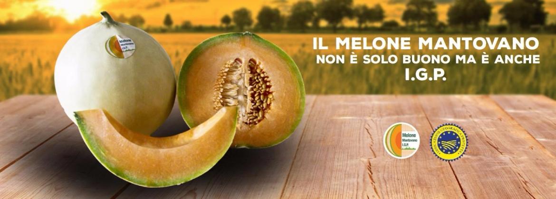 Aromatico e ricco di gusto il Melone Mantovano IGP, tipico frutto estivo
