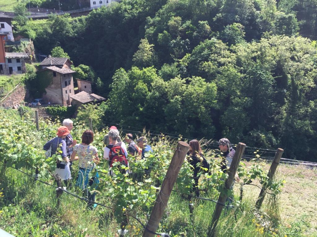 Wekeend speciali di Maggio in Trentino con Gemme di Gusto