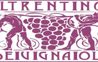 Il Trentino dei Vignaioli racconta l'autenticità e l'artigianalità della vigna