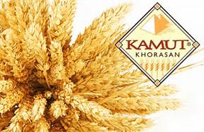 KAMUT presenta il primo studio sui bambini con sensibilità al glutine non celiaca
