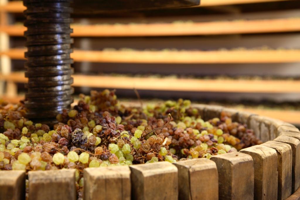 DIVINNOSIOLA, dal 22 marzo al 22 aprile, quando il vino si fa santo