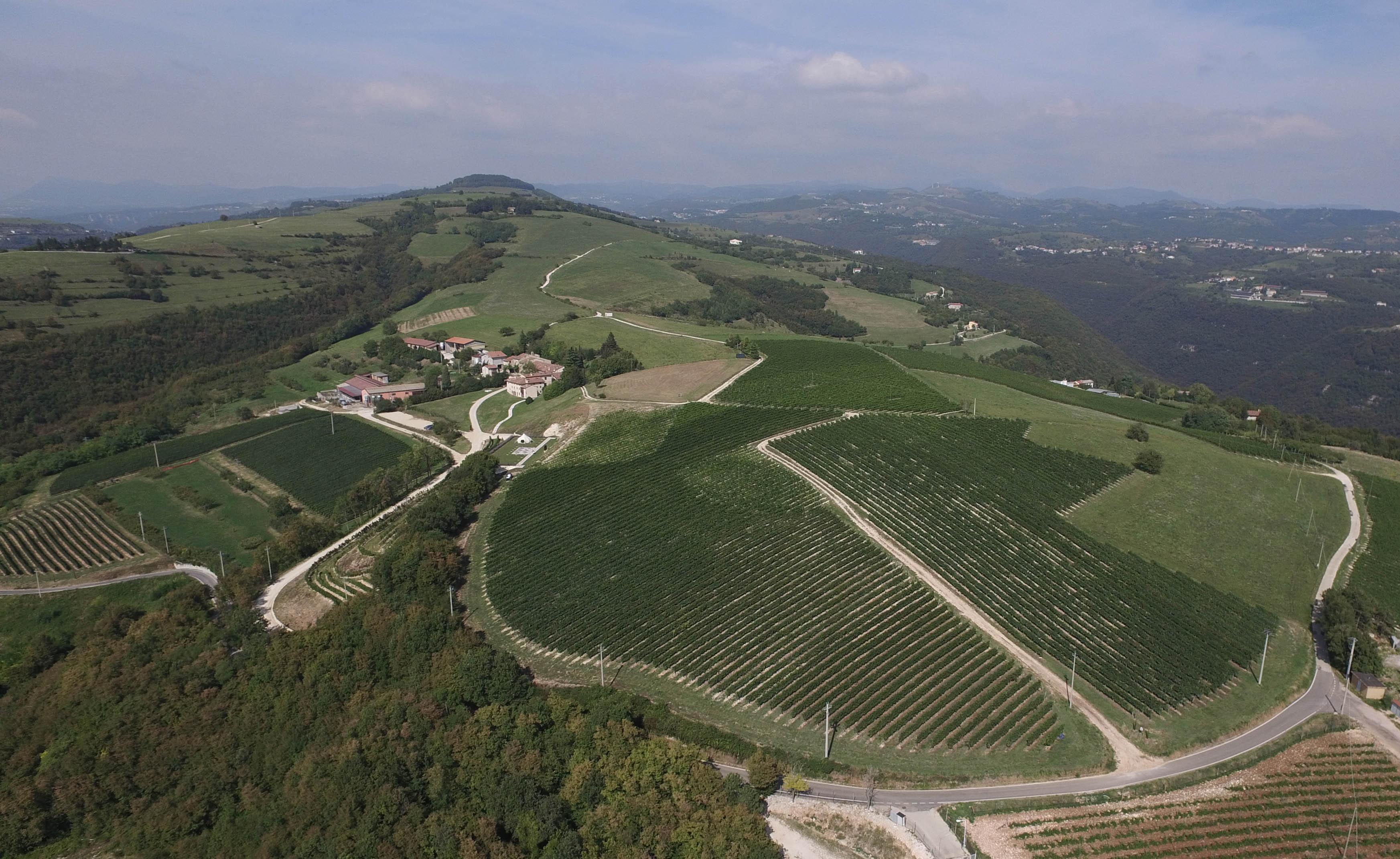 Nasce il Wine Retreat Ca' Del Moro de La Collina dei Ciliegi