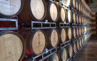 Il mondo dei vini, come abbinarli e riconoscere la loro qualità