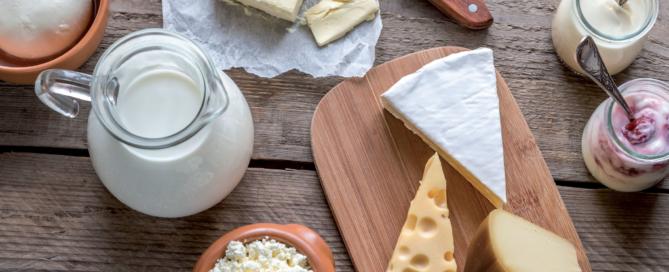 milch.bayern e.V.: formaggi di qualità prodotti con lo squisito latte della Baviera!