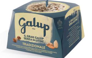 Panettone Gran Galup Senza Glutine, buono e adatto a tutti!