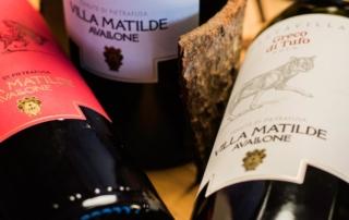 Presentato a Vinitaly il nuovo progetto aziendale di VILLA MATILDE AVALLONE