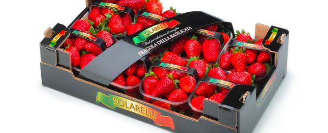 Fragole Solarelli, dolci e profumate!