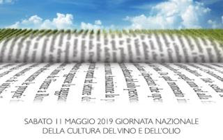 """AIS Veneto: l'11 maggio a Padova per un concerto """"da bere"""""""