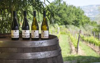Primo incontro Autoctoni a Milano: protagonisti tre vitigni della Campania