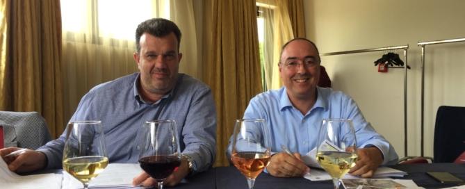 Associazione dei vini veronesi e Vinho Verde: siglato l'accordo di collaborazione da 2,3 milioni di euro