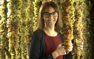 Maculan ottiene il passaporto ambientale grazie ai vitigni resistenti