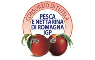 L'Europa firma i prodotti dei suoi territori promuove Pesca e Nettarina di Romagna IGP