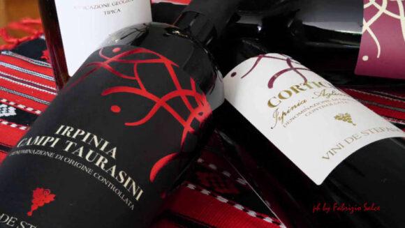 Irpinia : i grandi vini iniziano nella vigna