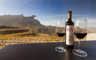 Isole Canarie: i vini che nascono dai vulcani