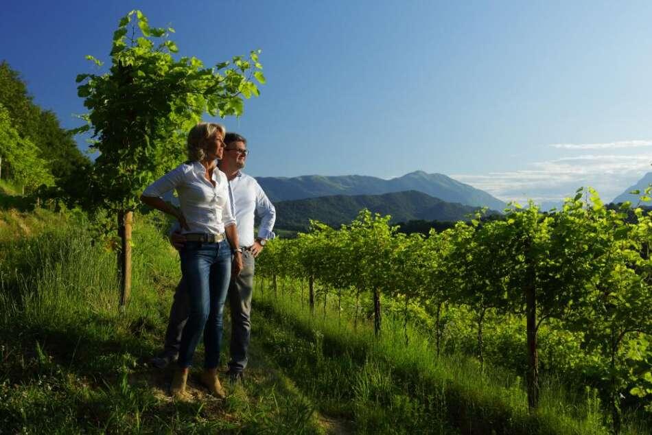 Tenuta vinicola Le Manzane: riflessioni e ottimismo