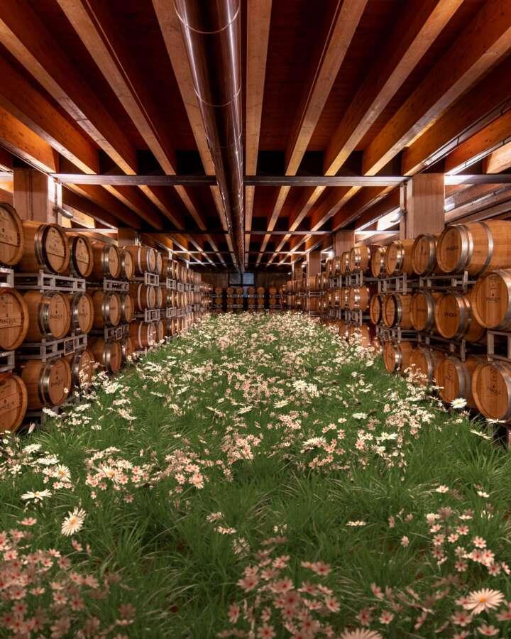 Pasqua Vini inaugura la mostra multimediale A Taste of Italy