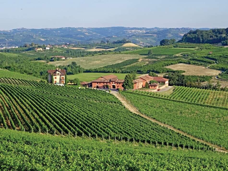 Celebrazione del vino a Casa Cayega